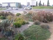 Jardinier, Jardinage: Un beau jardin toute l\'année sur Quissac ...