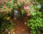 Jardinage à domicile Saint-Mamert-du-Gard