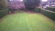 Jardinage à domicile Wingles