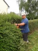Jardinage à domicile Doué-la-Fontaine