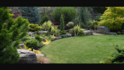Jardinage à domicile Bourron-Marlotte