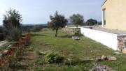 Jardinage à domicile Salernes