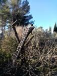 Jardinage à domicile Aix-en-Provence