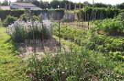 Jardinage à domicile Lauzerte