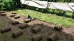 Jardinage à domicile Bois-d'Arcy
