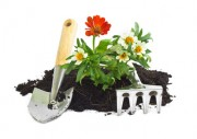Jardinage à domicile Perpignan