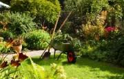 Jardinage à domicile Trieux