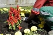 Jardinage à domicile Burie