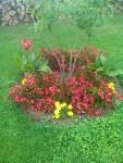 Jardinage à domicile Metz