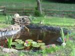 Jardinage à domicile Faucogney-et-la-Mer