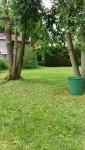 Jardinage à domicile Vauréal