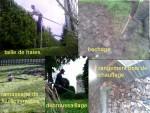 Jardinage à domicile Bressuire